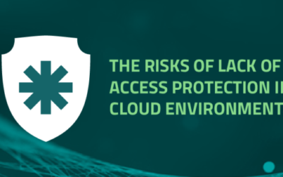 The risks of lack of access protection in cloud environments