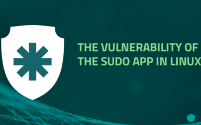 The vulnerability of the Sudo APP in Linux